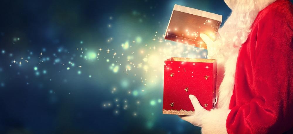 Offre spéciale fin d'année - un cadeau idéal pour Noël