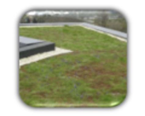 PVC-Folie für ein Grünes Dach - 2.142 €