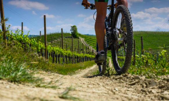 Ticket Combinato (es. Bike&Wine, Trek&Lunch, Padel&Aperitif ecc.. - da € 50 a persona)