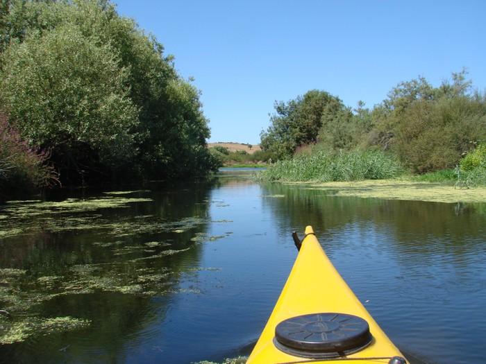 Ticket Kayak sul fiume (da € 20 a persona)