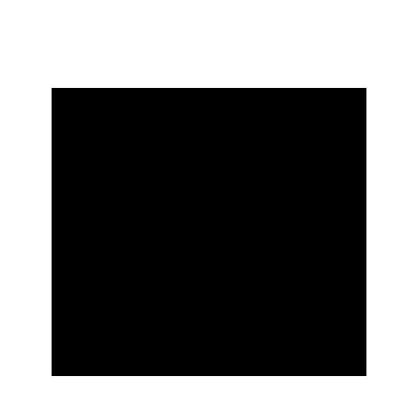 Blaubeeren / Heidelbeeren