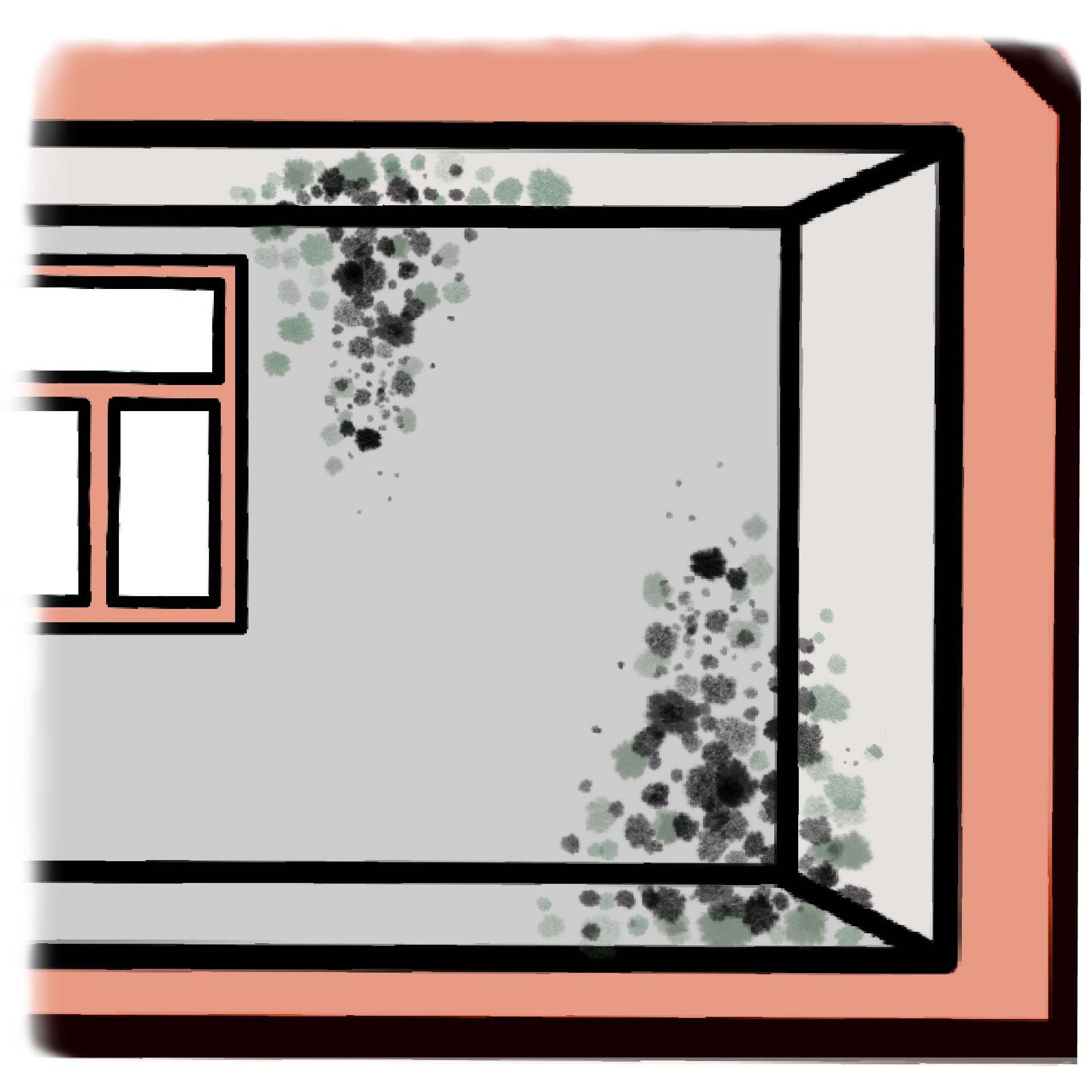 Flecken an Wand, Boden und/oder Decke